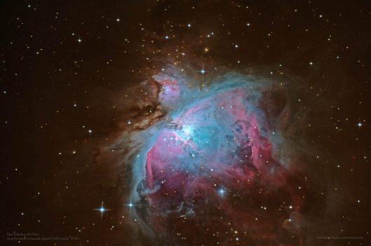 M42 FW.jpg