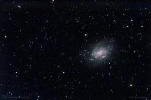NGC300 FW