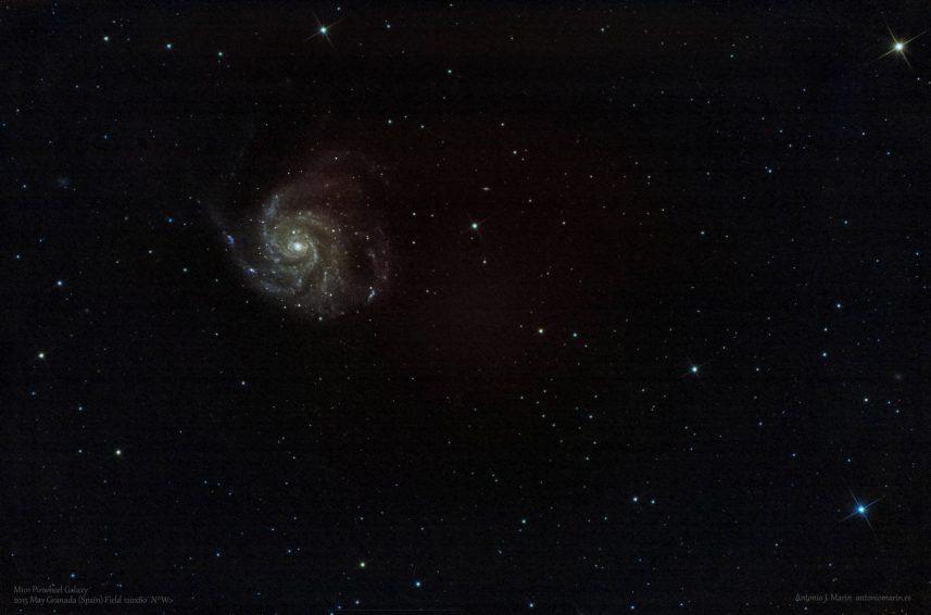 M101 FW