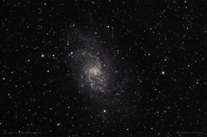M33 Triangulo FW