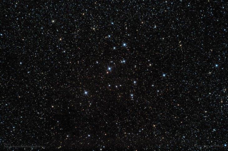 M39 FW
