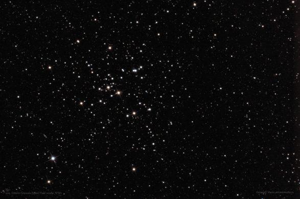 M41 FW